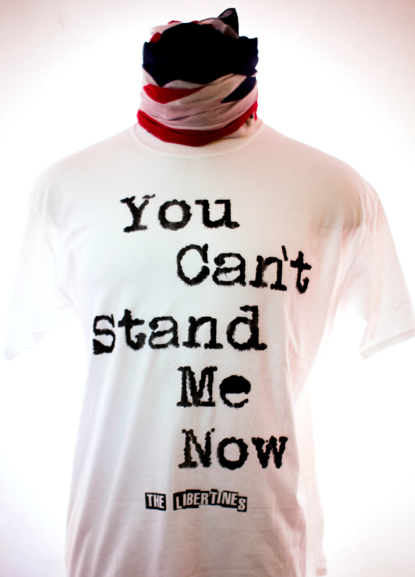 You Can't Stand Me T-Shirt (SALE) - The Libertines