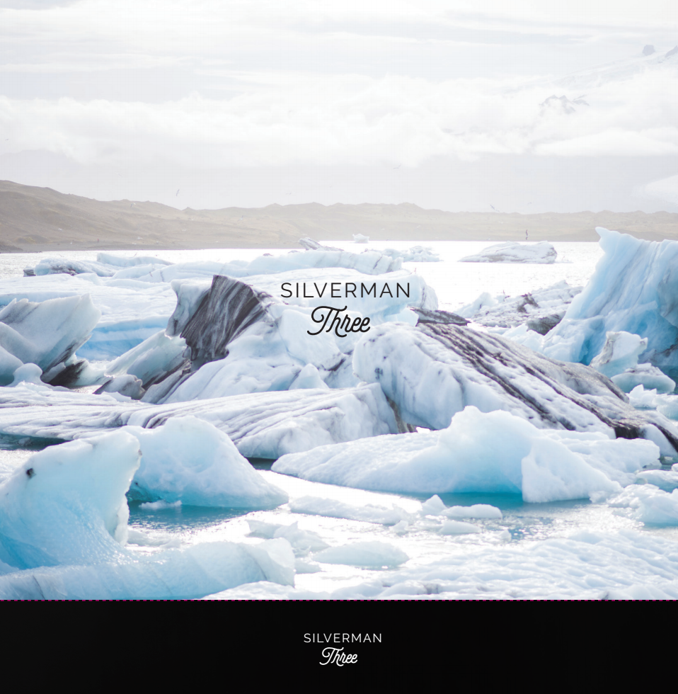 Silverman Box Set - CD - Silverman