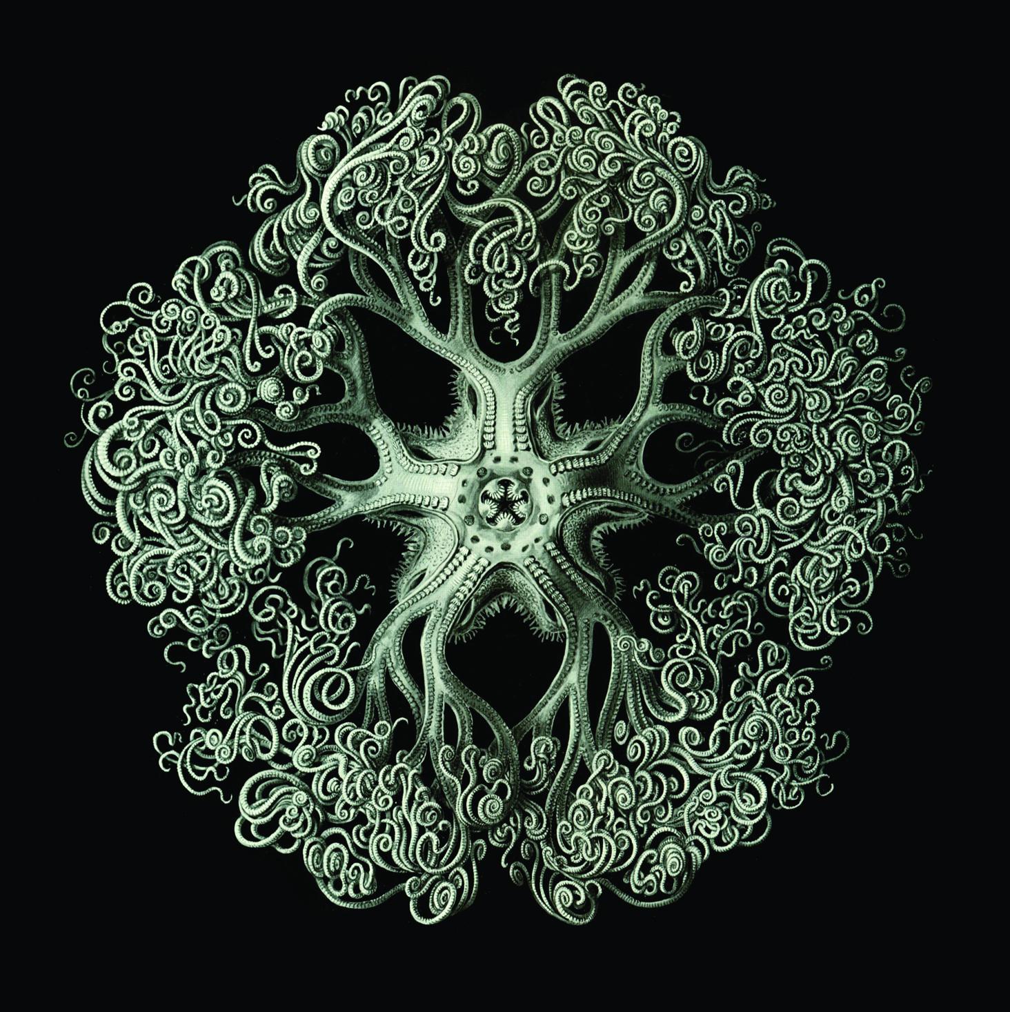 Emma Pollock & RM Hubbert - Tour EP - Digital Single (2012) - Emma Pollock