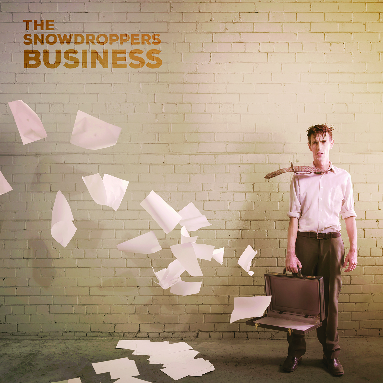 Business (CD) - The Snowdroppers